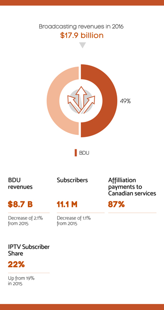 Infographic summarizing section 4.3 - Broadcasting distribution sector