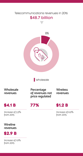Infographic summarizing section 5.6 – Wholesale telecommunications sector